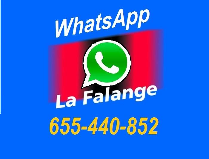 Nuevo servicio de WhatsApp de La Falange